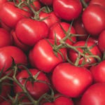 #279 Tomatoes