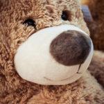 #359 Bear