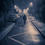 #390 Premières neiges