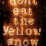 #426 La neige jaune