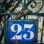 #481 Entangled 23