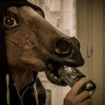 #519 Heineken cheval