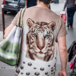 #961 L'oeil du tigre