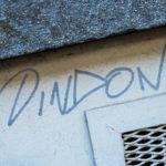 #1356 DINDON
