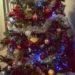 #2208 Enfin Noël
