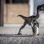 #2588 Rugbyosaurus