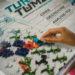 #2603 Turing Tumble