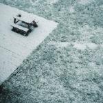#2602 Y neige