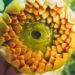 #2773 Fleur jaune