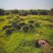 #2825 Ruines pré colombiennes